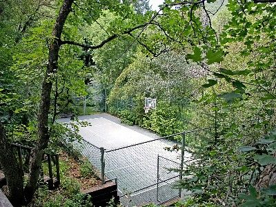 tennis court surrounded by green leafy trees